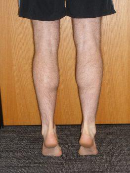 double leg heel rise